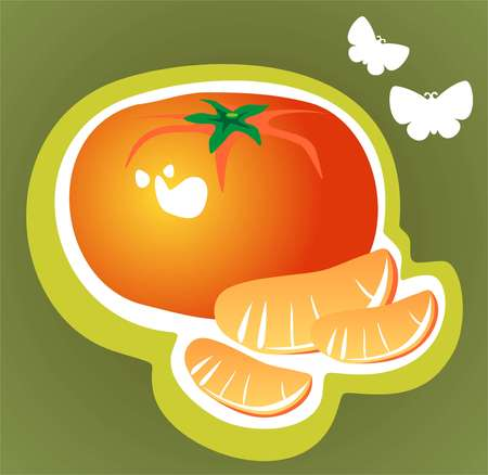 Stylized tangerine and slices isolated on a green background. Vector