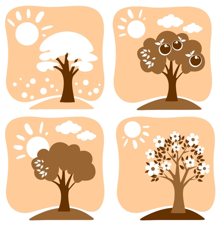 appletree: Apple-tree in the winter, in the summer, in the spring and in the autumn.