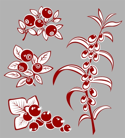 Stylized berries set isolated on a gray background.