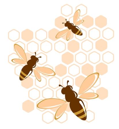 honey bee: Stylized bees and honey on a white background. Illustration