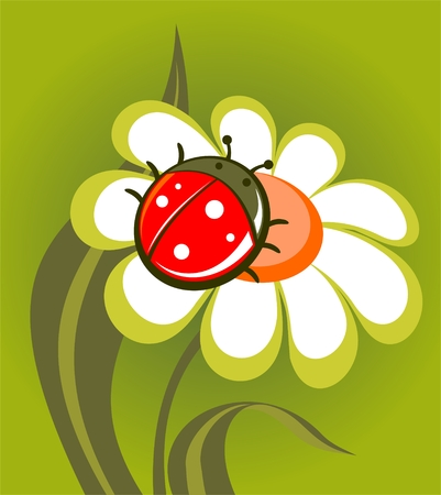 Pattern with  ladybird and flower on a green background.