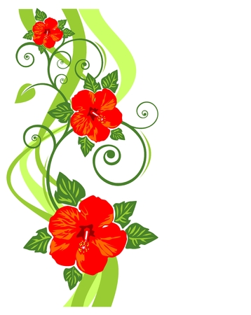 hibiscus flower: Pattern with red flowers  and curves on a white background.
