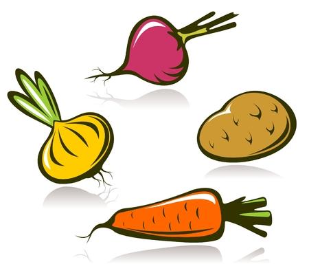 remolacha: Conjunto de vegetales estilizados aislado en un fondo blanco. Vectores