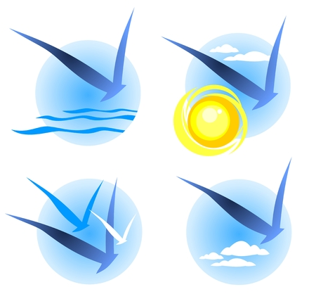 sea gull: Four bird symbols set on a blue background  Illustration