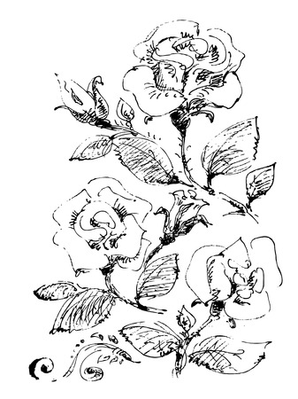 black and white image: Stylized pattern with flowers and leaves on a white background.