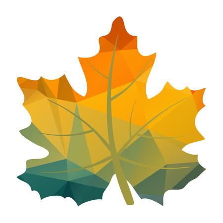 Foglia di acero autunno colorato poligonale isolato su uno sfondo bianco.