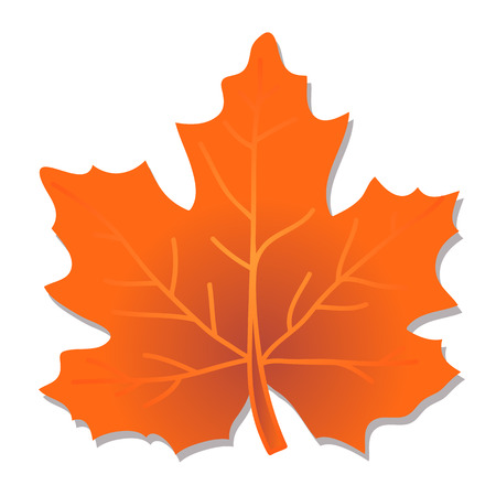 drawings image: Red-orange polygonal autumn maple leaf isolated on a white background. Illustration