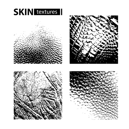 Skin textures set isolated on white background. Vector collection.