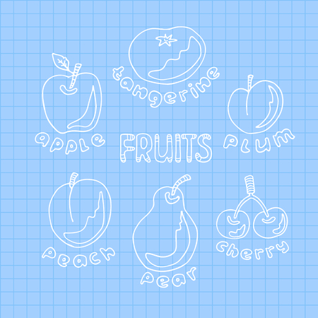 Hand drawn fruits set onblue squared paper sheet. Doodle style. Design elements for gift wrap or fabric. Ilustração