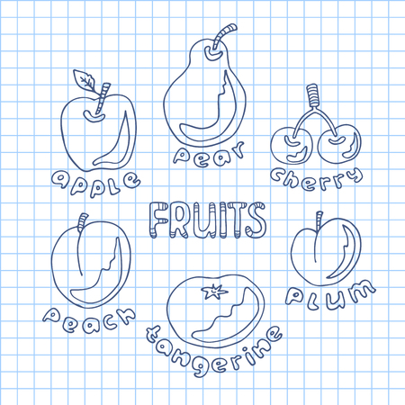 Hand drawn fruits set on  squared paper sheet background.. Doodle style. Design elements for gift wrap or fabric.