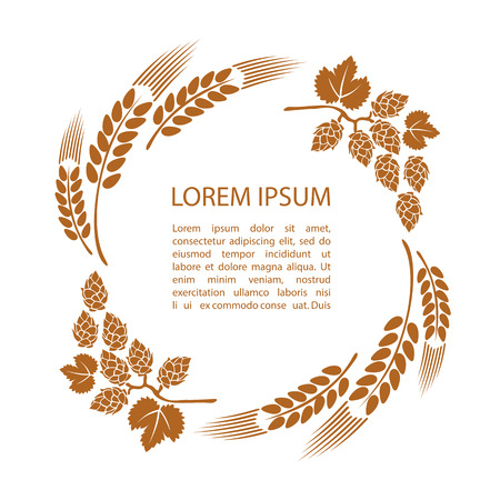 Template with wheat ears and hop isolated on white background. Design element beer menu for restaurant or bar. Illustration