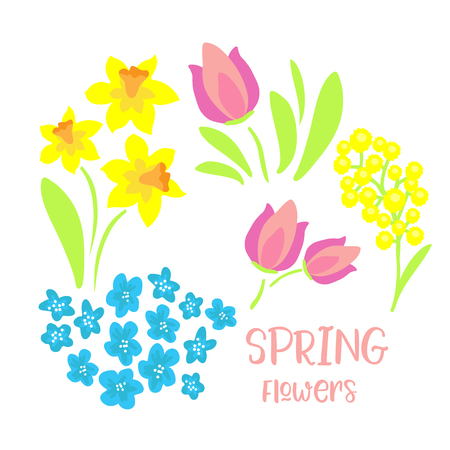 Spring flowers set isolated on white background.  Design element for greeting cards, stickers or magnets.