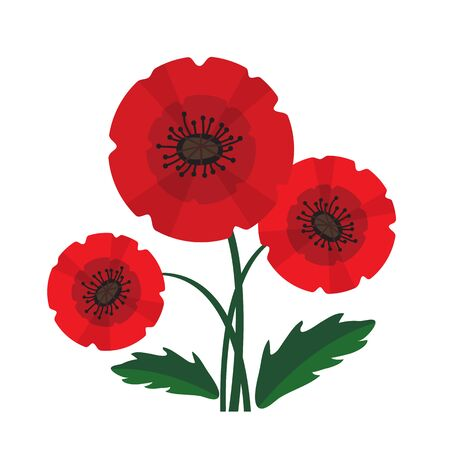 Red poppy with leaves isolated on white background. Remembrance Day  or Azur Day vector illustration. Design element for poster, banner, leaflet or sticker. 矢量图像