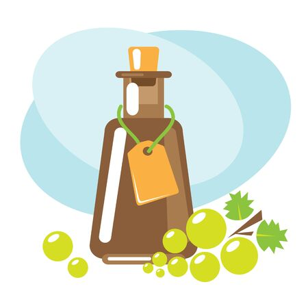 Balsamic vinegar with green grape. Design elements for leaflet, booklet or sticker. Harvest symbol. Ingredients for cooking, baking, salad dressing and preservation.