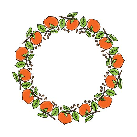 Persimmon fruit border isolated on white background. Hand drawn style. Vector illustration. Design element for leaflet, booklet, poster, sticker. Stock Illustratie