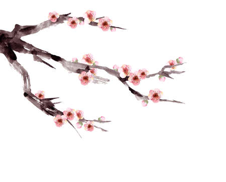 Watercolor painting of plum blossoms