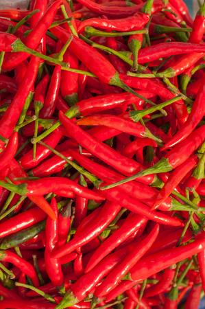 chili peppers: red hot chili peppers  Stock Photo