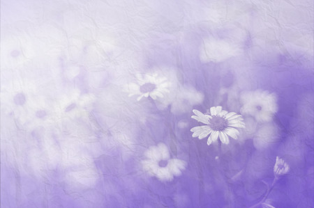 beautiful flowers with paper background photo
