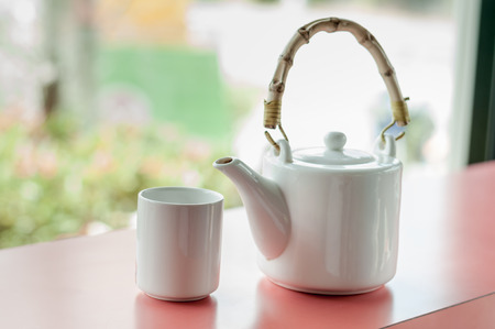 antique dishes: Little white tea cup and a kettle in the garden