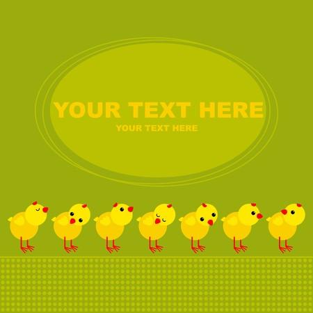 poult: Postal de pollos