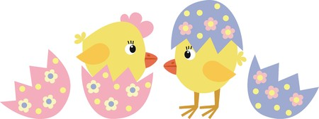poult: pollo