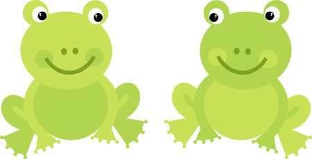 Two frogs Vector