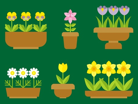 pansy: garden flowers in pots Illustration