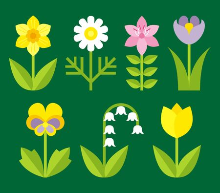 lily of the valley: garden flowers  Illustration