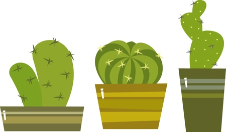 vector collection of small cactuses in a pots Illustration