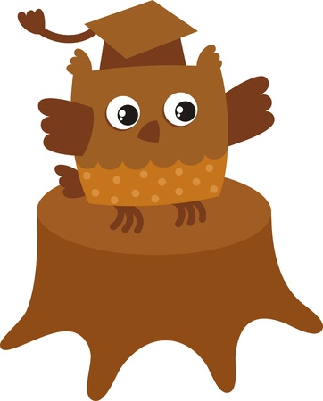 The Sign Of The Owl Hat Graduate A Symbol Of Knowledge And