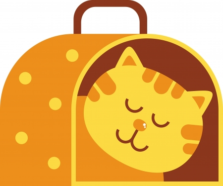 cat carrier: cat carrier illustration, a cat carrying a cat in it
