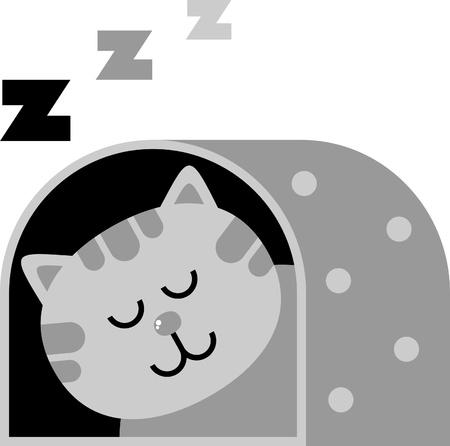 home accessories: cat dream illustration, carrying for the cat, dream Illustration