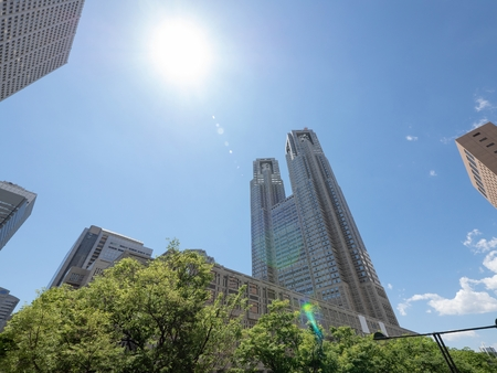 Tokyo Metropolitan Government Building and Trees Stock Photo