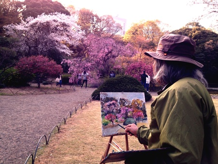 Capturing the scene... an artist paints blooming sakura at Shinjuku Gyoen.