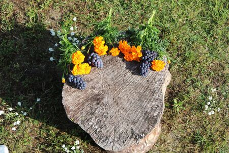 Against the background of a forest stump, flowers and fruits lie 版權商用圖片
