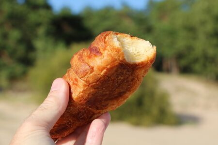 Close-up - tasty beautiful croissant in hand on a background of nature
