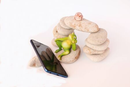 Close-up - frogs on the stones watching news on a smartphone.