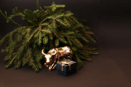 Bull as a symbol of New Year and Christmas 2021 on a black background of a Christmas tree and decor. Metal bull on the background of a green Christmas tree and gifts.