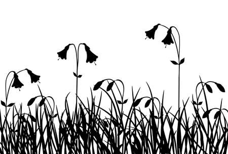 Grass and flower, vector illustration illustration