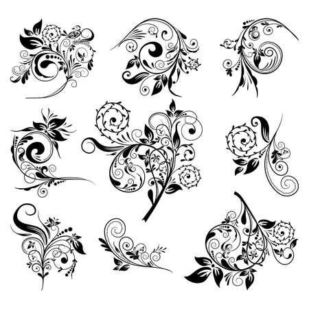 Satz von floral Elements für Design, Vector illustration