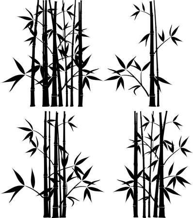 Bamboo, vector illustration