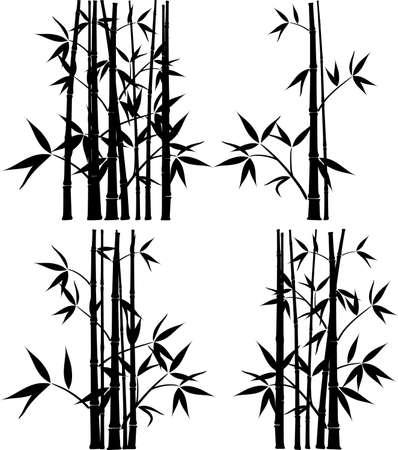 Bambou, illustration vectorielle