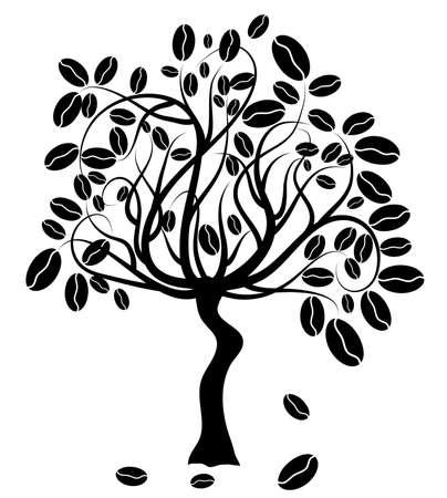 planta de cafe: �rbol de caf�, ilustraci�n vectorial
