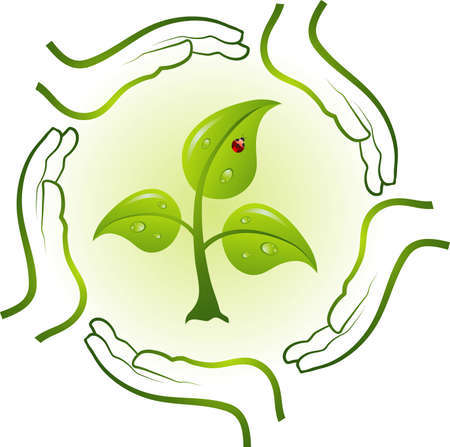 Green life in hands, vector illustration