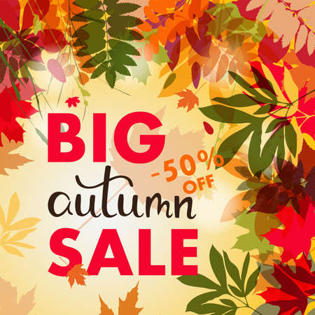 Sales banner with multicolor autumn leaves. Vector discount offer, fall poster background. Layout for discount labels and shopping.