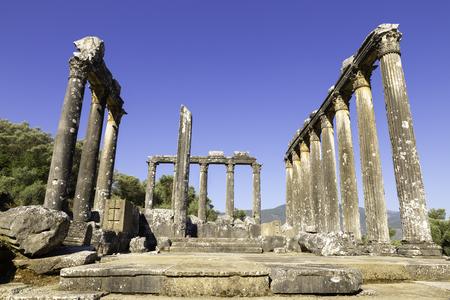 Säulen des antiken Tempel des Zeus in Euromos war eine antike Stadt in Anatolien Caria Standard-Bild - 45260049