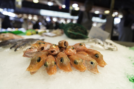 Fresh raw shrimps on display of crushed ice at fish market store shop Standard-Bild