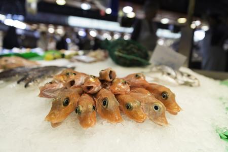 ice crushed: Verse rauwe garnalen op vertoon van gemalen ijs op de vismarkt winkel winkel