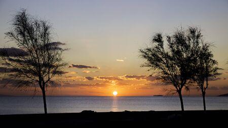 Malerischer Blick auf den wunderschönen Sonnenuntergang mit Baumschattenbilder in den Vordergrund Standard-Bild - 50717937