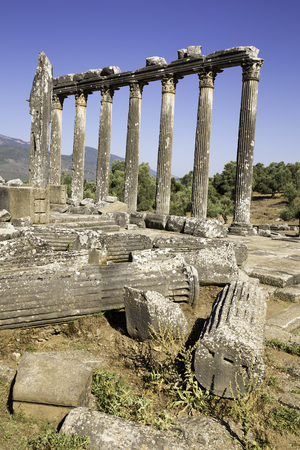 Vertical composition columns of the ancient temple of Zeus at Euromos Standard-Bild
